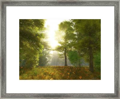 Sunlit Meadow Framed Print by Cynthia Decker