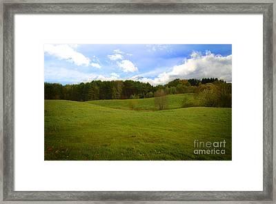 Sunny Hill Framed Print by Jolanta Meskauskiene