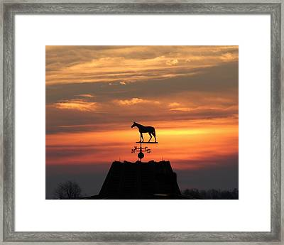 Sunrise At Keeneland Framed Print by Megan Genova