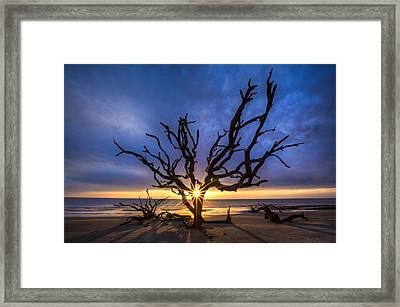 Sunrise Jewel Framed Print by Debra and Dave Vanderlaan