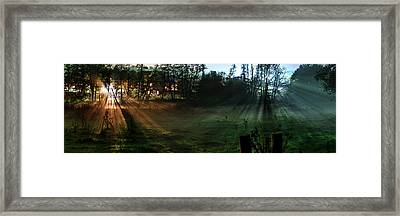 Sunset In A Forest Meadow Framed Print