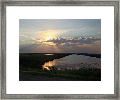 Sunset Rays Framed Print by Nancy Landry