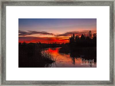 Sunset Reflections Framed Print by Robert Bales