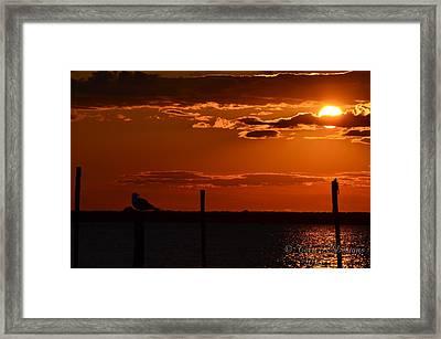 Sunset Framed Print by Terri K Designs