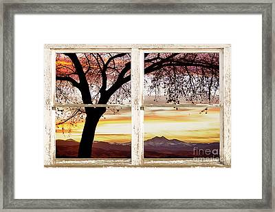 Sunset Tree Silhouette Abstract Picture Window View Framed Print by James BO  Insogna