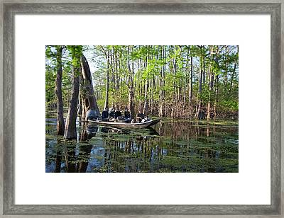 Swamp Tour Framed Print by Jim West