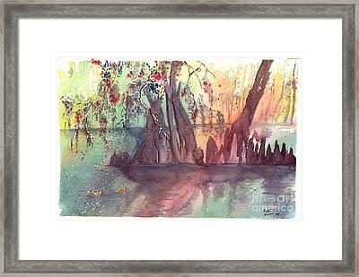 Swamplight Framed Print