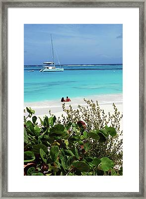 Swimming The Waters Of Prickly Pear Framed Print by Lynn Seldon