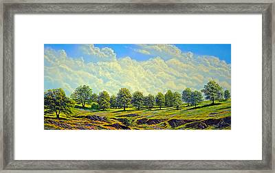 Table Mountain In Bloom Framed Print by Frank Wilson