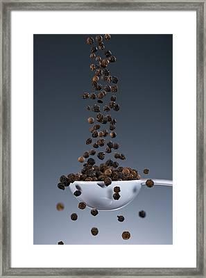 1 Tablespoon Black Pepper Framed Print by Steve Gadomski