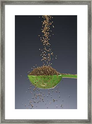 1 Tablespoon Celery Seed Framed Print