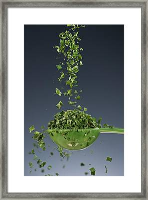 1 Tablespoon Chives Framed Print
