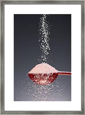 1 Tablespoon Himalayan Salt Framed Print by Steve Gadomski