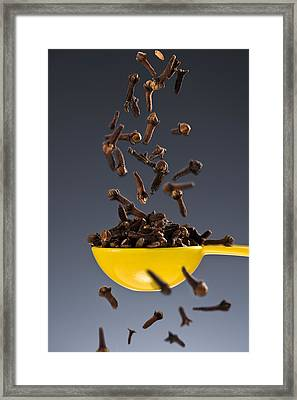 1 Tablespoon Whole Clove Framed Print