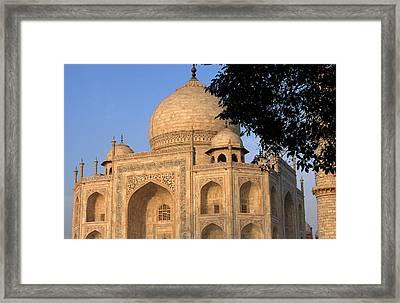 Taj Mahal In Evening Light Framed Print by Aidan Moran