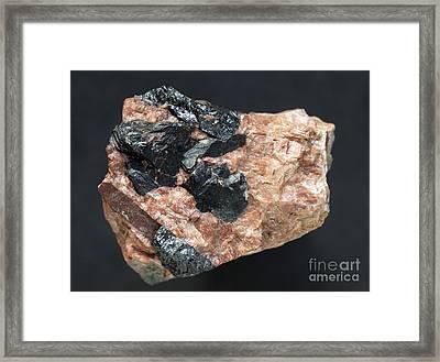 Tantalite Crystals Framed Print by Dirk Wiersma
