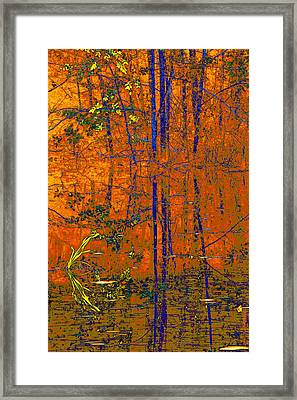 Tapestry Framed Print by Steve Warnstaff