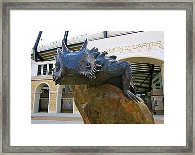 Tcu Horned Frogs..fear The Frog Framed Print by John Babis