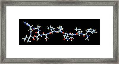Teixobactin Antibiotic Molecule Framed Print