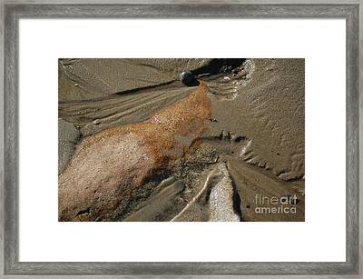 Framed Print featuring the photograph Temporary Illusion by Christiane Hellner-OBrien