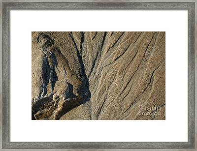 Framed Print featuring the photograph Temporary Illusions by Christiane Hellner-OBrien