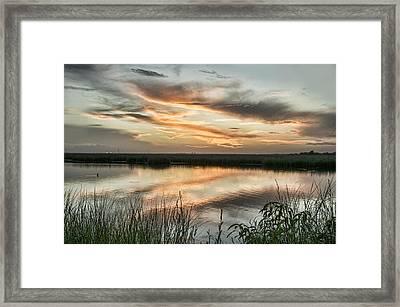 The Bayou Framed Print