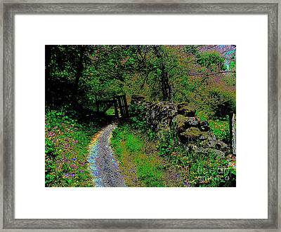 The Broken Gate Framed Print by Raphael OLeary