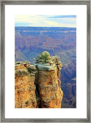 The Canyon Balanced Rock Framed Print by Douglas Miller