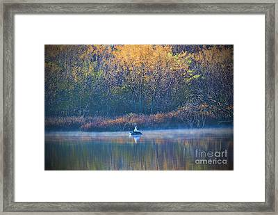 The Catch Framed Print by Elizabeth Winter