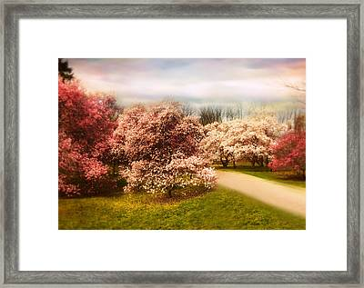 The Cherry Orchard Framed Print by Jessica Jenney