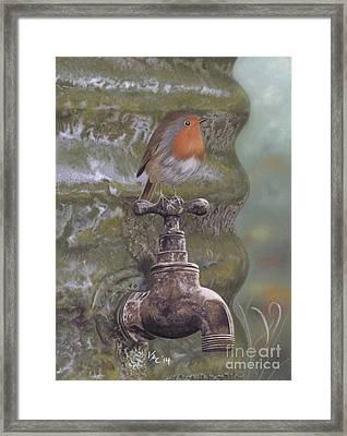 The Constant Gardener Framed Print