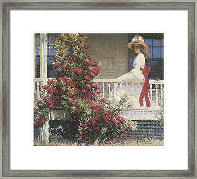 The Crimson Rambler Framed Print