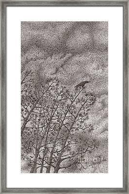 The Crow Framed Print by Wayne Hardee