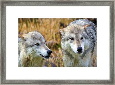 The Eyes Have It Framed Print by Athena Mckinzie