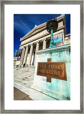 The Field Museum Sign In Chicago Framed Print by Paul Velgos