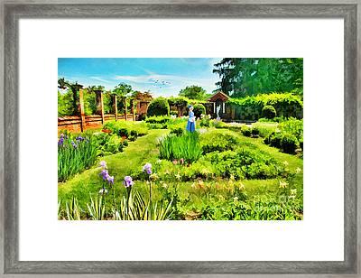 The Flower Garden Framed Print by Darren Fisher