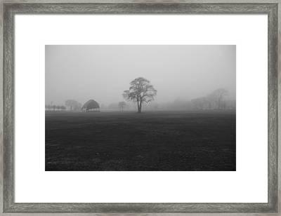 The Fog Tree Framed Print