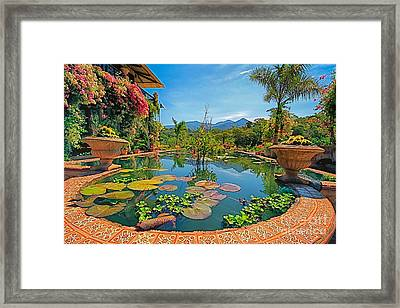 The Garden  Framed Print by Nicola Fiscarelli