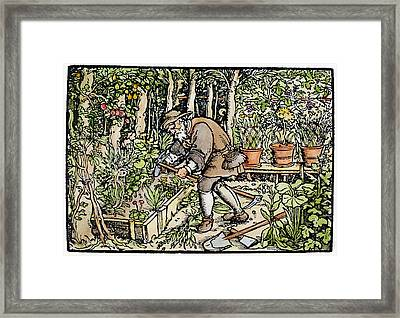 The Gardener, 1550 Framed Print by Granger