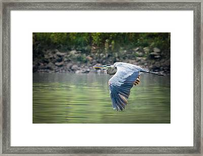 The Glide Framed Print