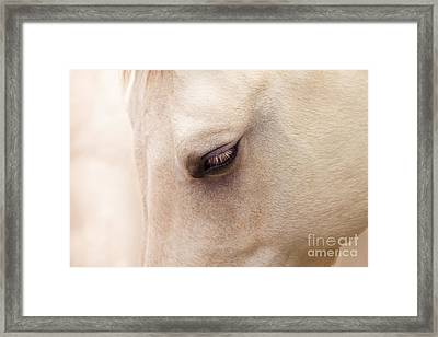 The Guardian Of My Heart Framed Print by Sharon Mau