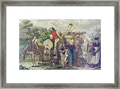 The Harvesting Of Wine Grapes, 19th Century Engraving, Time Framed Print