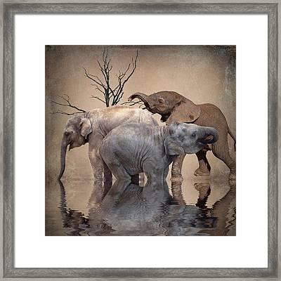 The Herd Framed Print by Sharon Lisa Clarke