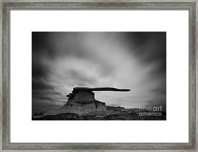The King Of Wings Framed Print by Keith Kapple