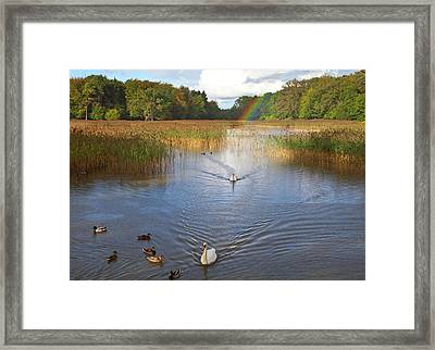The Lake At Emo Court, Emo Village Framed Print by Panoramic Images