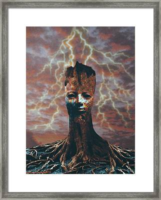 The Last Tree Standing Framed Print by Larry Butterworth