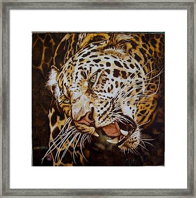 The Leopard's Hello Framed Print by Cynthia Adams