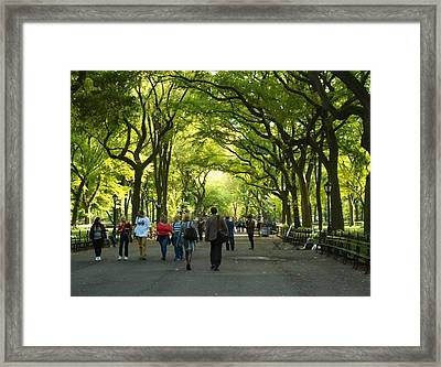 Framed Print featuring the photograph The Mall by Justin Lee Williams