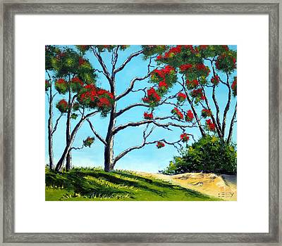 The New Zealand Christmas Tree Framed Print