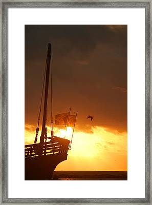 The Nina  Framed Print by Leticia Latocki